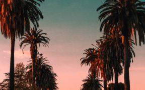 Miami couché de soleil