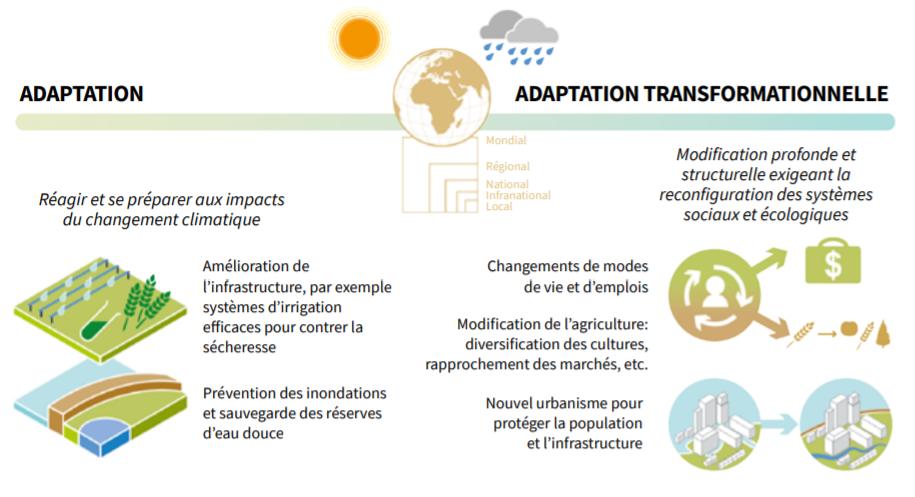 adaptation et adaptation transformationnelle